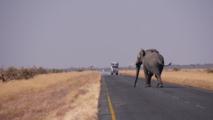 Carretara Botswana. Foto: HBieser.