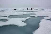 Científicos analizando el deshielo en el Ártico. Foto: NASA/Kathryn Hansen