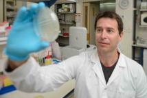 El investigador Rotem Sorek, artífice del descubrimiento. Foto: Weizmann Institute of Science