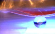 Cuando se ilumina con luz ultravioleta, el material inteligente con la superficie adhesiva se dobla. De esta manera puede levantar, transportar y colocar objetos planos y tridimensionales (aquí, una esfera de cristal de 1 milímetro de diámetro). Imagen: Emre Kizilkan. Fuente: Universidad de Kiel.