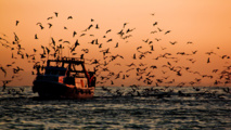 Pesca en el Mediterráneo. Foto: Hernán Piñera