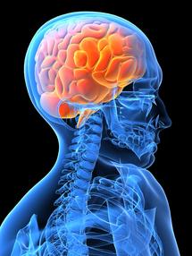La conciencia se extiende por el cerebro siguiendo un patrón