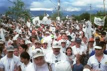 Multitud contra la no violencia en Colombia: individuo y sociedad, onda y partícula