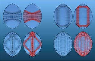 Funciones de onda para cuatro estados de distinta energía de un billar cuántico con forma de limón. Se muestra en negro la densidad de probabilidad cuántica y en rojo (a la derecha) la traza de una trayectoria clásica.