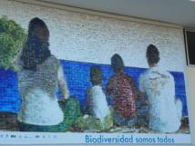 Biodiversidad Somos Todos. Mural en Puerto Villamil. Isla Isabela. Foto:Patrice Clark