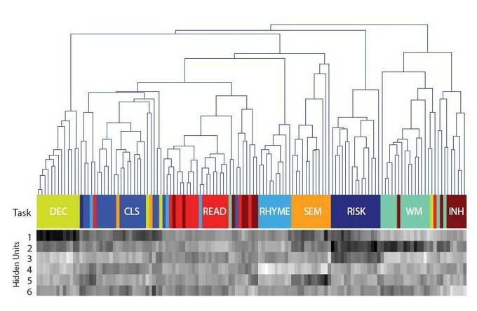 Visualización reducida de los datos de la actividad mental. Foto: Autores.