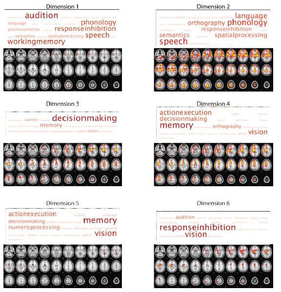 Visualización de la actividad cerebral asociada a conceptos mentales. Foto: autores