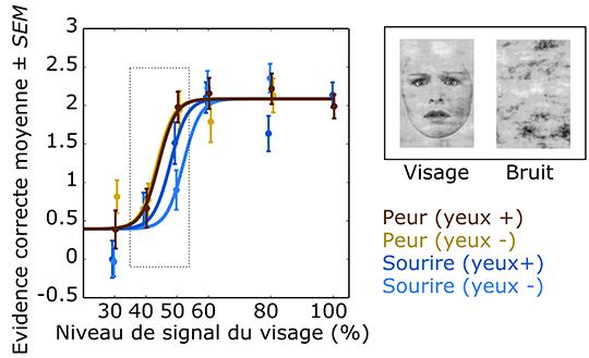 Niveles de detección del rostro en los bebés en función de la emoción expresada (miedo o sonrisa). © Laurie Bayet et Department of Clinical Neuroscience, Section of Psychology, Karolinska Institutet, Stockholm, Suède.