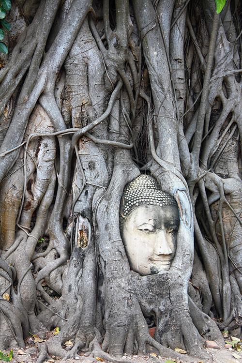 Crónica de un viaje a Tailandia: la NTE en la Chulalongkorn University
