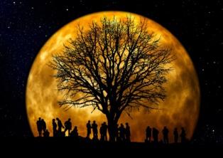 El fin del humanismo deja paso al subhumano