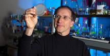 Michael Hecht en su laboratorio. Fuente: Universidad de Princeton.