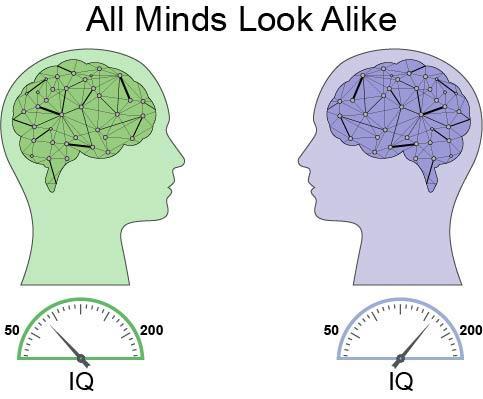 En el gráfico se muestra la compleja red neuronal de dos cerebros con diferentes capacidades de aprendizaje. Aunque ambos cerebros comparten el mismo espectro de sinapsis, las neuronas del cerebro de la derecha están conectadas a través de enlaces fuertes y gruesos y arrojan un cociente intelectual mayor. Las neuronas del segundo cerebro (a la izquierda) están conectadas con enlaces débiles y delgados, y arrojan un cociente intelectual menor.  Fuente: Universidad de Bar-Ilan.