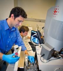 Andrew Minor y su equipo han dado el primer paso en el desarrollo de tecnologías nucleares más seguras. Imagen: Minor et al., Lawrence Berkeley National Laboratory.