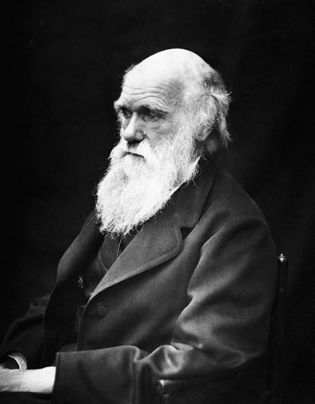 Charles Darwin. Fuente: Wikimedia Commons.