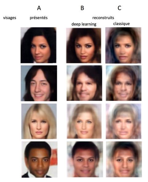 En la imagen, la columna A refleja algunas de las caras presentadas a los sujetos de la investigación. La columna B presenta las caras reconstruidas por la IA a partir de los patrones cerebrales de los sujetos. La columna C representa las caras reconstruidas por un modelo clásico de IA. © Rufin VanRullen & Leila Reddy.INSB.