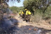 Brigadistas sofocando un incendio forestal. Fuente: Wikimedia Commons.
