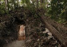 El taller del astrónomo maya se ocultaba en la selva del Petén (Guatemala). Imagen: Tyrone Turner © 2012 National Geographic.