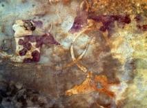 Las imágenes de animales, de entre 5.000 y 8.000 años de antigüedad, encontradas al sudoeste de Libia sugieren que estos animales jugaron un importante papel en la vida de los habitantes de la región. Fuente: Nature.