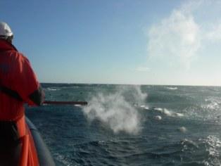 La embarcación de Salvamento Marítimo Salvamar Adhara en el Mar de Las Calmas de El Hierro, durante erupción volcánica. Foto: Instituto Volcanológico de Canarias.