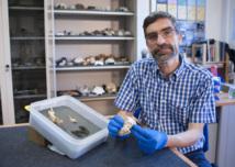 Antonio Rosas, investigador en el Museo Nacional de Ciencias Naturales (MNCN-CSIC). Foto: CSIC.