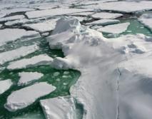 Gracias al uso de la urea como fuente de energía las arqueas pueden crecer y reproducirse en las condiciones extremas del invierno ártico. Fuente: CSIC.