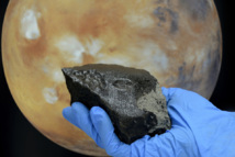 El vidrio formado en el interior de la roca ha conseguido mantener las propiedades de varios materiales marcianos. Fuente: Natural History Museum of London.