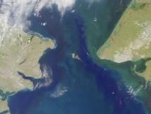 Estrecho de Bering. Fuente: Wikimedia Commons.