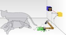 Representación de los dos estados simultáneos del gato de Schrödinger, metáfora de los estados cuánticos. Fuente: Wikimedia Commons.