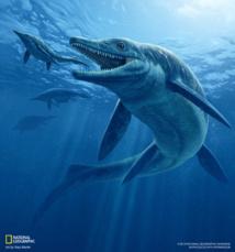 Reproducción artística del Thalattoarchon saurophagis. Imagen: Raúl Martín. Fuente: National Geographic Society.
