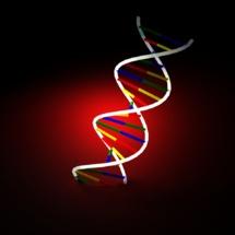 El genoma de una persona da mucha información sobre sus parientes. Imagen: svilen001. Fuente: StockXchng.