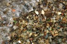 España y otros países están aún lejos de reciclar el 50% de los residuos urbanos. Imagen: Chance Agrella. Fuente: FreeRangeStock.
