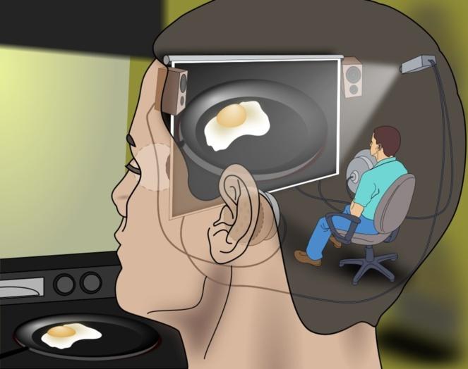 Una persona diminuta sentada en un cine dentro de una cabeza humana, mirando y escuchando todas las experiencias que tiene el ser humano. Representación del Teatro Cartesiano. Imagen: Jennifer Garcia.