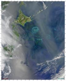"""Esta imagen de satélite muestra un gran florecimiento de fitoplancton, de unos 150 kilómetros de diámetro, que se produjo en el Océano Pacífico de las costas de Japón, en mayo de 2009. Los investigadores han asumido que el hierro impulsó un fenómeno similar al final de la última era glacial, pero un nuevo estudio sugiere que en realidad fue una """"tormenta perfecta"""" de luz y nutrientes lo que lo estimuló. Imagen: Norman Kuring, MODIS Ocean Color Team/NASA. Fuente: WHOI."""
