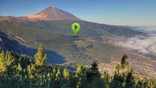 El proyecto Corona forestal de Mirlo Positive Nature pretende repoblar el valle de la Orotava en Tenerife. Fuente: Mirlo Positive Nature.