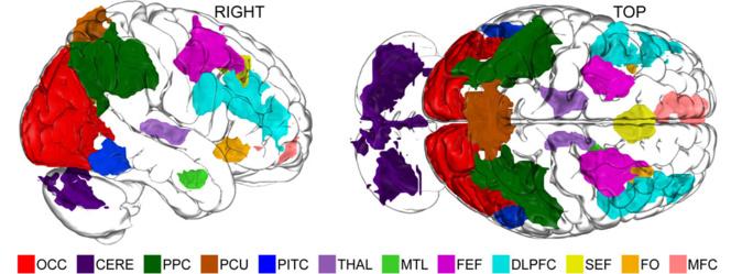 Once áreas del cerebro muestran niveles diferenciales de actividad durante el proceso de imaginar, reveló el estudio. Imagen: Alex Schlegel. Fuente: Dartmouth College.