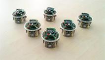 Los e-pucks utilizados en el experimento. Fuente: UPM.