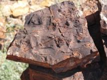 Roca sedimentaria de 3.500 millones de años de la Formación Dresser (Pilbara, Australia). Imagen: Nora Noffke. Fuente: Carnegie Institution for Science.
