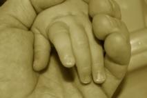 Embriones digitales permiten conocer  a los hijos, antes de que sean concebidos
