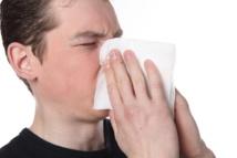 El tratamiento de las alergias podría cambiar radicalmente tras los últimos descubrimientos. Imagen: Studio Cl Art. Fuente: Photl.com.