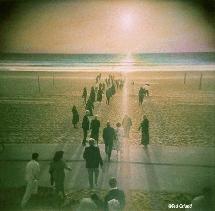 Juppies marchando hacia el Mar. Ted Orland