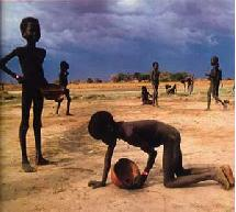 Niños buscando insectos para comer en Sudán