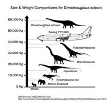 Comparativas del tamaño y el peso de 'Dreadnoughtus' con un Boeing y con otros animales. Fuente: Nature.