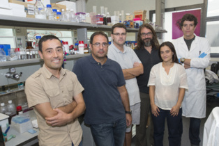 Los investigadores que han desarrollado Biogás Plus. De izquierda a derecha, Eudald Casals, Xavier Font, Antoni Sánchez, Víctor Puntes, Raquel Barrena y Martí Busquets. Fuente: UAB.