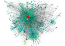 Propagación de mensajes en Twitter (red de retuits en verde) sobre la red de seguidores (gris). Los nodos representan usuarios y su tamaño es proporcional al número de seguidores que tienen. En rojo se indican los usuarios que han enviado tuits originales y en amarillo los que los han retuiteado. Imagen: A.J. Morales, R.M. Benito et al. Fuente: Social Networks/SINC.