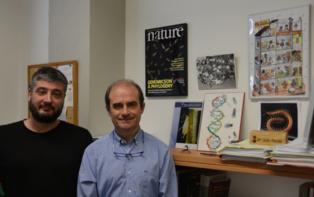 Los investigadores Alejandro Sánchez Gracia y Julio Rozas, del Departamento de Genética y del Instituto de Investigación de la Biodiversidad de la UB (IRBio). Fuente: UB.