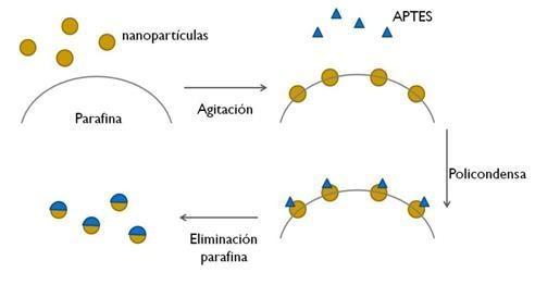 Esquema del proceso de asimetrización de las partículas. Fuente: UPM.