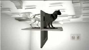 Creatividad sobre el gato de Schödinger de Eatdrink.