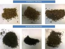 Estiércol original vs. biochar producido. Fuente: UPM.