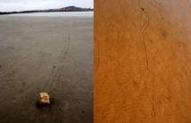 Las piedras errantes o 'navegantes' se mueven durante las tormentas ventosas del invierno sobre tapices bacterianos, según la hipótesis de los investigadores. Imagen:  Sanz-Montero et al. Fuente: UCM/SINC.