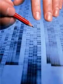 ADN, una de las claves del futuro